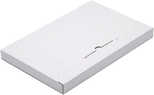 BRIEVENBUSBOX BUDGET A5 230X160X26MM WIT 1 Stuk
